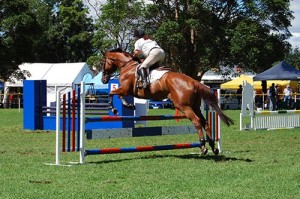 Berry_Show_Showjumping-500x333